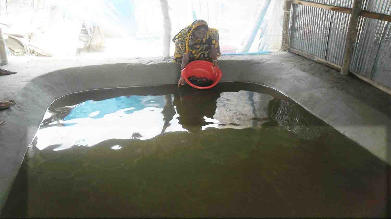 Crab Farming, Rashida Begum, Baroaria W.S. Batiaghata, Khulna